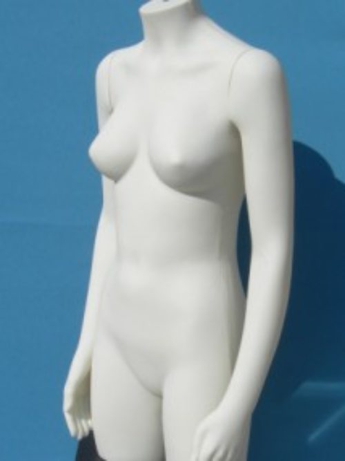 Women's torso with arms