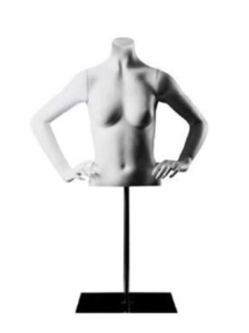 Female torso with chrome stand
